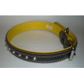 Pet Collar Nylon with Single Studs