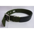 Pet Collar Thick Nylon (Dark Green)